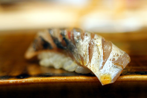 Aji / Spanish Mackerel