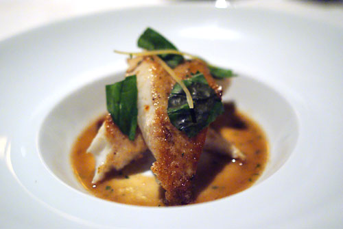 Pan-Seared New Zealand John Dory