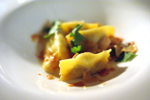 Duck confit agnolotti