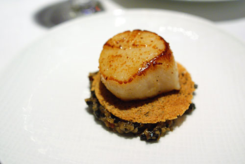 SCALLOP AND MELANO SPORUM TRUFFLE: Roasted Scallop on top of Truffled Biscotte