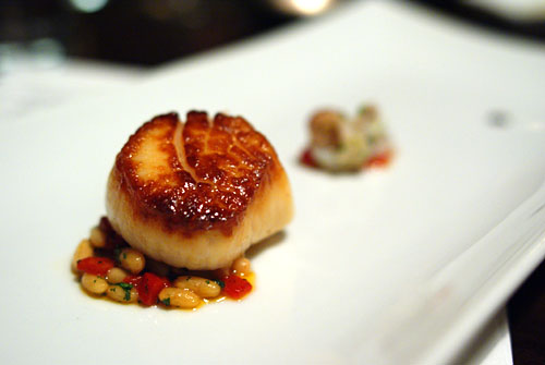 New Bedford Scallop