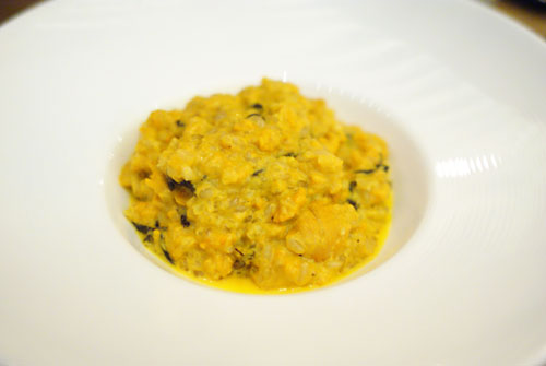 Uni Risotto with Black Trumpet Mushroom