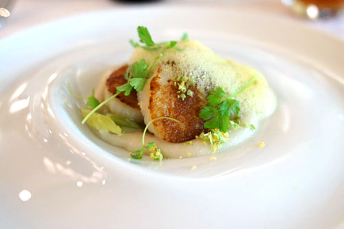Pan Roasted Diver Scallops