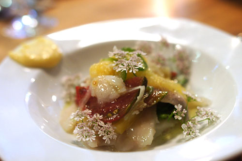 Dorade Ceviche, Heirloom Tomato, Spring Onions, Lemon Honey Paste