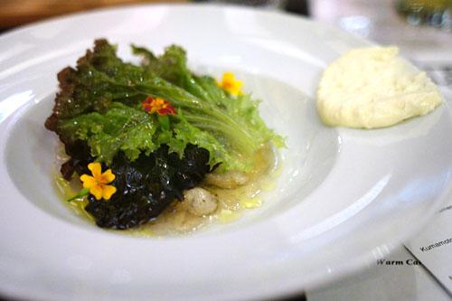 Kumamoto Oysters, Kimchi Consommé Gelée, Camembert Mousse, Apple