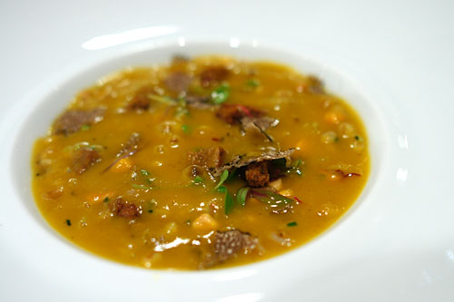 PUREE OF PUMPKIN SOUP