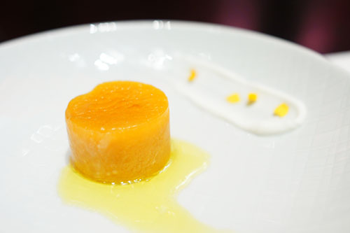 Frozen Apricot Coulant