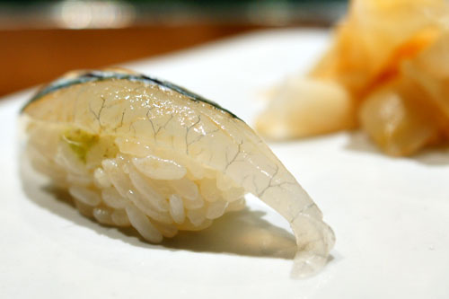 Needlefish / Sayori