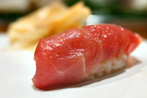 Medium Fatty Bigeye Tuna / Mebachi Chutoro