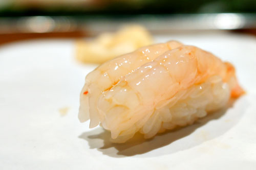 Sweet Shrimp / Amaebi