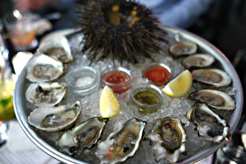 sea urchin / dozen oysters