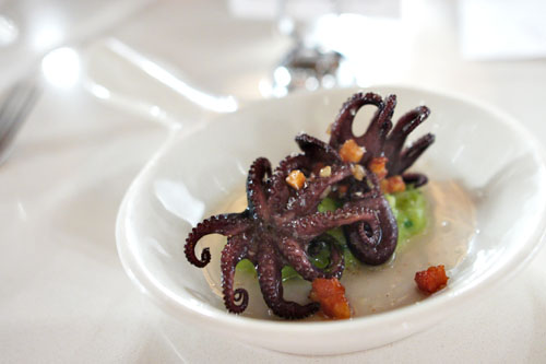 Braised Baby Octopus