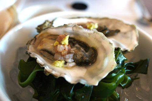 Fanny Bay Oysters/ Guanciale/ Wasabi/ Kelp.