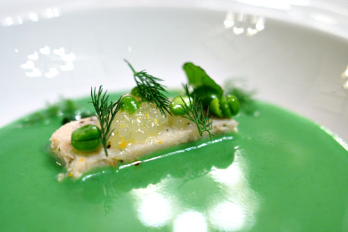 english peas, dungeness crab, lemon balm & dill