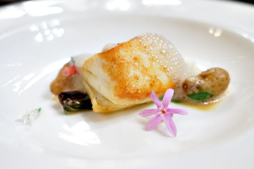 alaskan halibut, potato, oyster & ramps