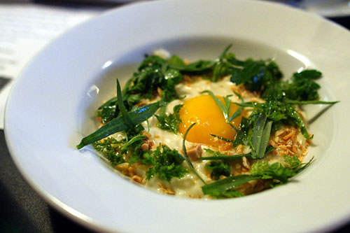 poisses Cheese Risotto, Hazelnut, Egg Yolk, Herb Salsa