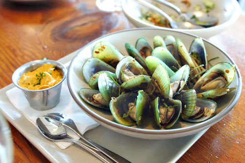 chilled greenlip mussels