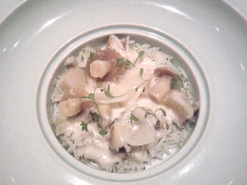 abalone blanquette