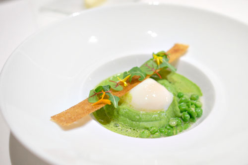 Poached Hen Egg
