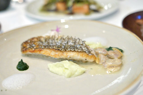Black Sea Bass, Crisp Scale, Littleneck Clams, Leek Puree