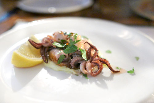 Grilled Monterey Squid
