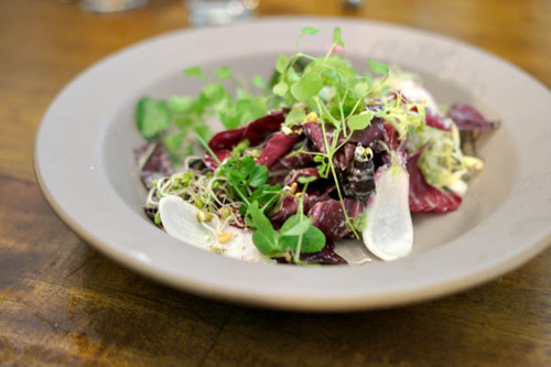 winter salad of shoots, leaves, and seeds; horseradish crme fraiche
