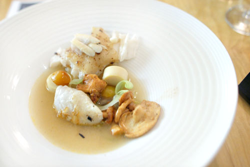 TURBOT | MUSHROOM