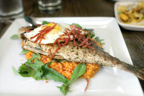 wood-grilled whole fish, tomato rice, fried egg & crispy sopressata
