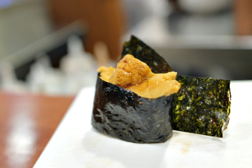 Sea Urchin / Uni