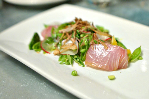 Yellowtail Crudo, Spring Vegetable Salad, Crispy Shallots, Mint & Avocado