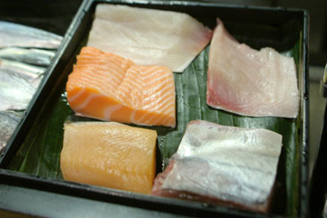 Yellowtail Family and Salmon Family Box