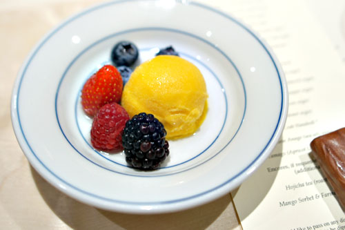 Mango Sorbet & Farmers market berries