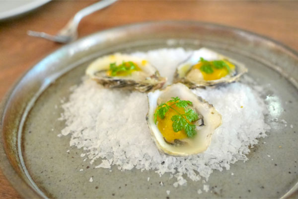 Morro Bay Pacific Gold Oysters