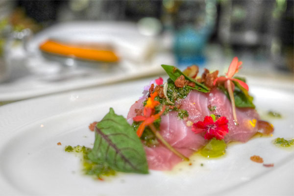 Hamachi & Duck Crackl'n Crudo