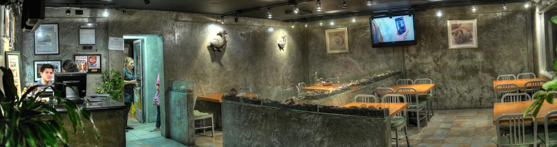 Coni'Seafood Interior