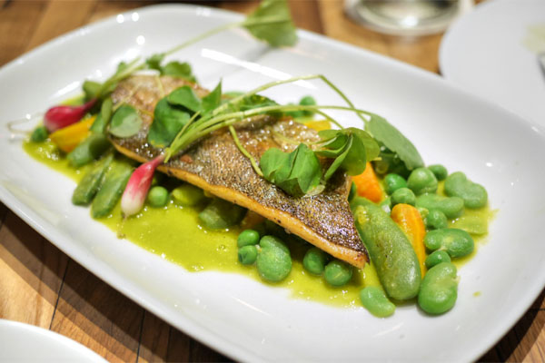 sausalito trout, pea and pistachio veloute, snap peas, pea greens