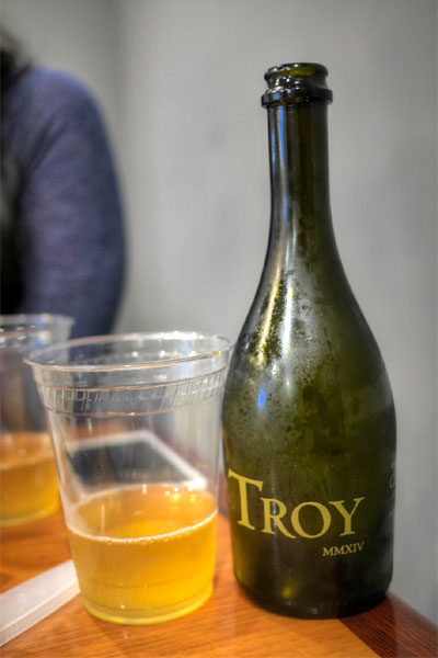 Troy MMXIV