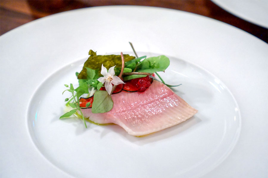 Brook trout, cucumber, borage, nettles