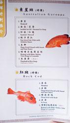 Sea Harbour Live Seafood Menu: Australian Garoupa, Rock Cod