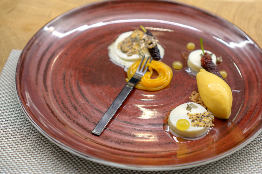 OLIVE OIL PANNA COTTA | MULBERRIES | APRICOT SORBET