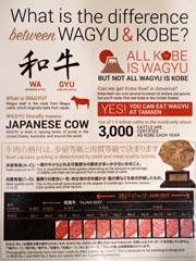 Tamaen Menu: Wagyu Information