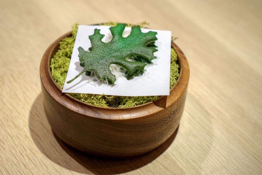 idiazabal leaf