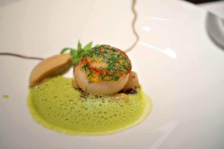Stonington Maine Scallop
