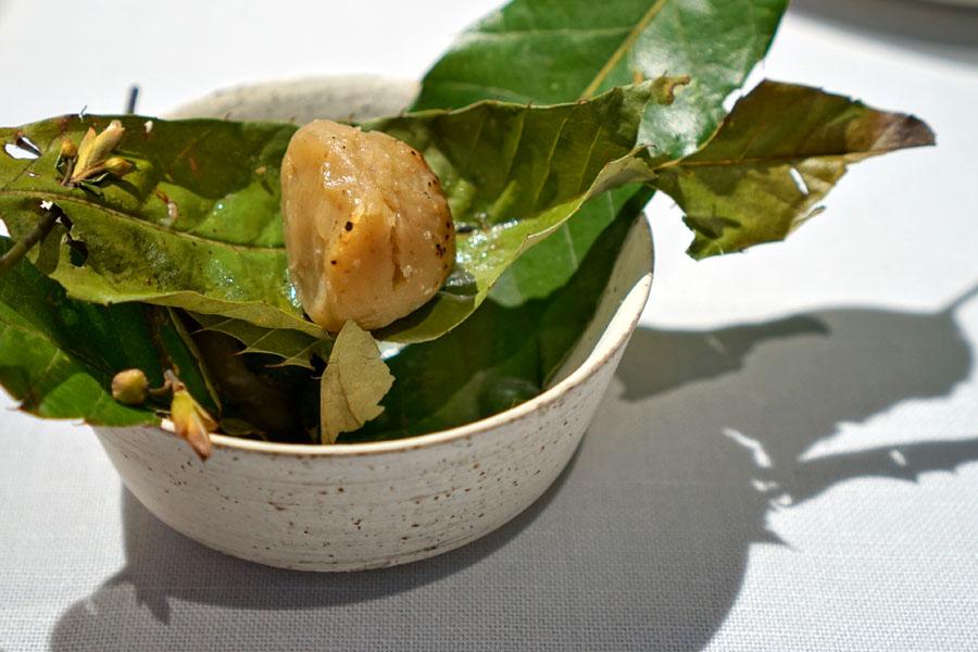 Chestnuts, Kyoto • Green Yuzu, Shizuoka